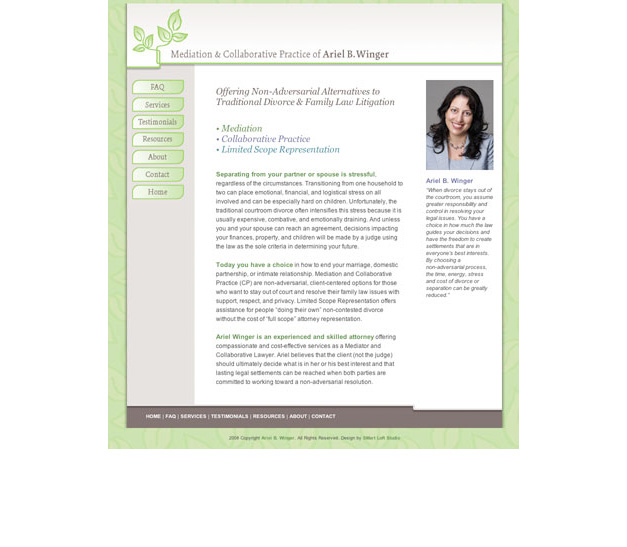 Original Website Design (2007)