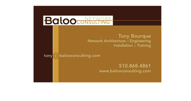Baloo Consulting